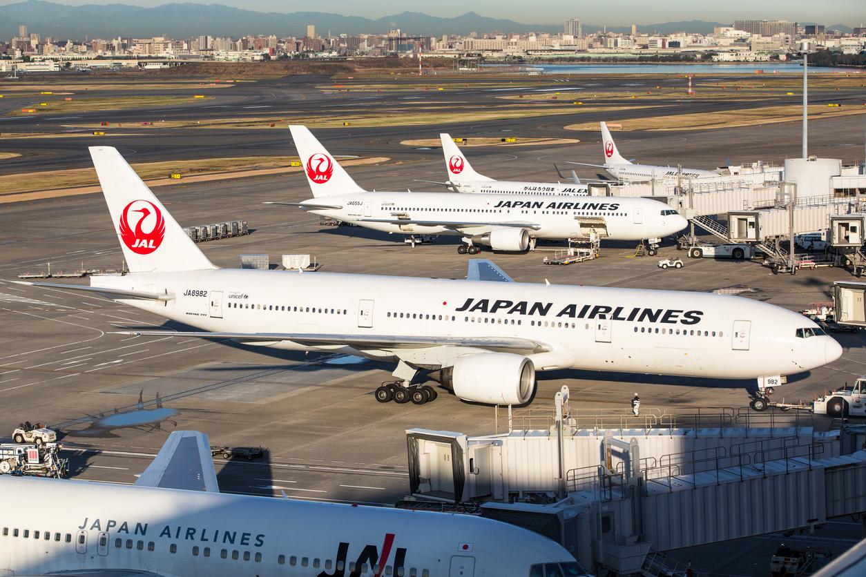 Resultado de imagen para Japan airlines